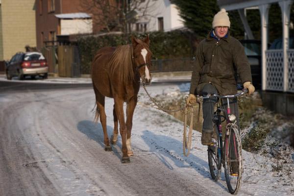 pferd-und-rad