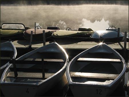 Nebelboote