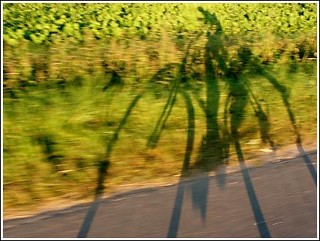 Rad-Schatten